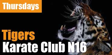 NEW! Sign up for Tigers Karate Club