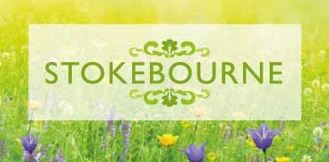 Stokebourne Midsummer Festival